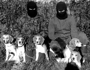 Animal Liberation Front Definition And More For Animal