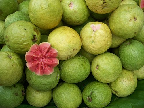 Guava | Punjabi Meaning of Guava