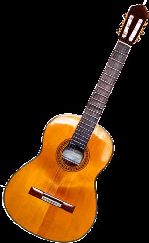 Guitar Bengali Meaning Of Guitar
