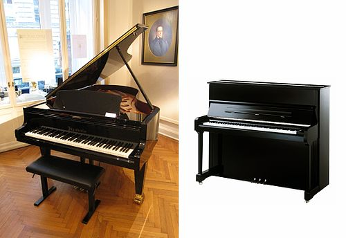 Piano | Punjabi Language Meaning of Piano